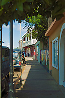 Culebra, Colorful Businesses, Tree Lined Street, Puerto Rico, USA