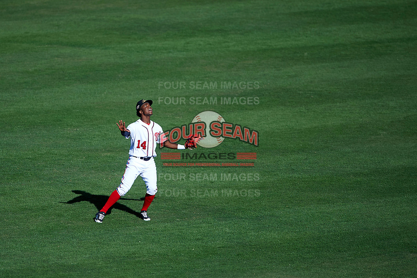 Mesa Solar Sox center fielder Victor Robles (14), of the Washington Nationals organization, settles under a fly ball during an Arizona Fall League game against the Peoria Javelinas on October 25, 2017 at Sloan Park in Mesa, Arizona. The Solar Sox defeated the Javelinas 6-3. (Zachary Lucy/Four Seam Images)