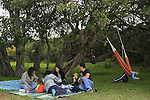 Israel, Sharon region, a picnic in Park Hasharon Nature Reserve