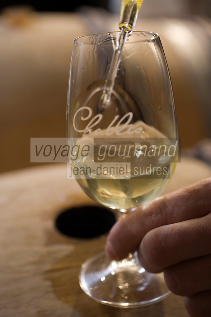 Europe/France/Bourgogne/89/Yonne/Chablis: Dégustation de Chablis AOC chez Jean Paul et Benoit Droin