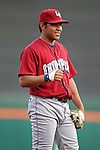 Lehigh Valley IronPigs 2010