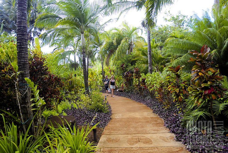 Tourists walk along a lush palm tree lined path at the main visitor center at the National Tropical Botanical Garden near Poipu, Kauai.