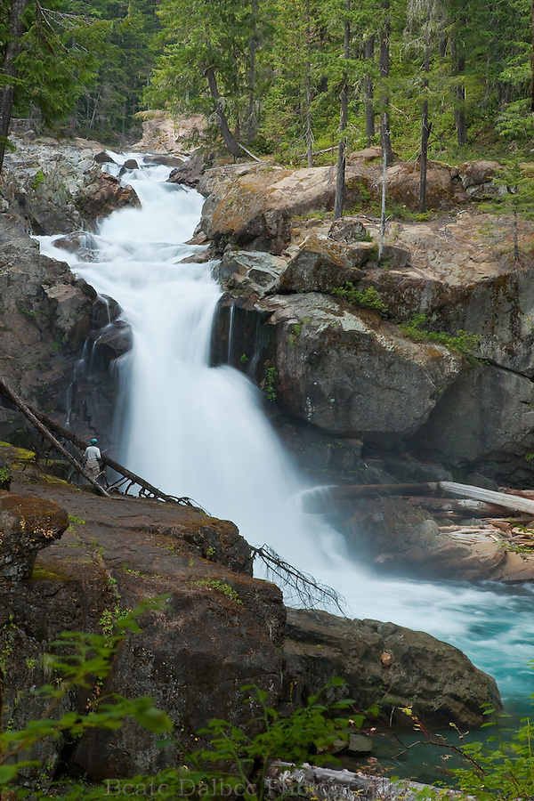 Silver Falls in Mt. Rainier National Park