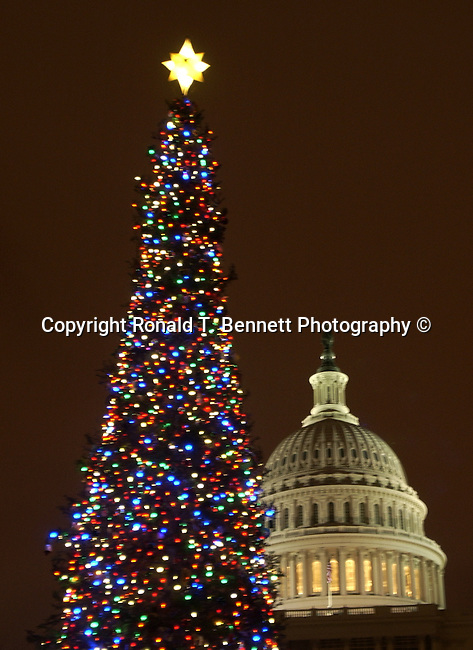 Christmas trees with United States Capitol Washington DC, Red white greet lights on Christmas trees with United States Capitol in background Washington D.C., Christmas tree, Red lights and people enjoy Christmas tree with United States Capitol in background Washington D.C., Fine Art Photography by Ron Bennett, Fine Art, Fine Art photo, Art Photography,