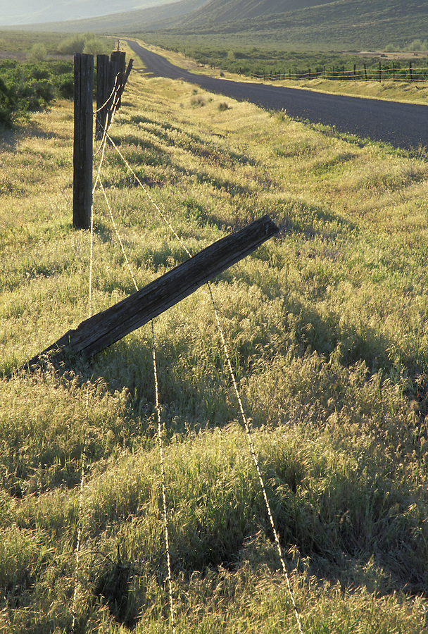 Fallen barbed wire fence along desert road at sunrise, Crab Creek Road, Crab Creek State Wildlife Recreation Area, Washington
