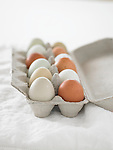 One dozen eggs, naturally colored brown, beige, and white, in an egg carton
