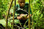 Anti-poaching snare removal team member, Godfrey Nyesiga, noting location of illegally set neck snare, Kibale National Park, western Uganda