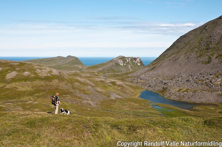 Dame med hund går til fots på Sørøya. Finnfjordnæringen i bakgrunnen. ---- Woman hiking on Sørøya.