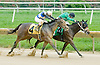 Really Seriously winning at Delaware Park on 9/5/12