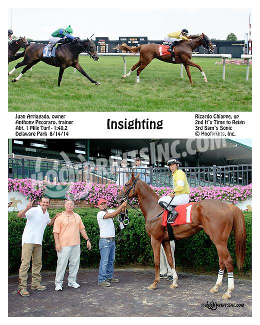 Insighting winning at Delaware Park on 8/14/14