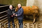 Mike Kissane manager Cahersiveen Mart on the right presenting John O'Connell from Spunkane, Waterville with his prize for his Champion Heifer at the Cahersiveen Mart Spring Heifer Show & Sale on Tuesday.