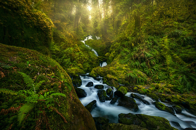 A beautiful waterfall cascades through a jungle environment of one of many rainforests in Olympic National Park.<br />