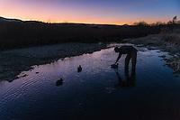 A waterfowl hunter sets decoys as dawn breaks on the Beaverhead River near Dillon, Montana.