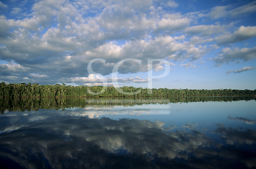 Amazon, Brazil. Forested river bank reflected in the water with clouds in the sky.
