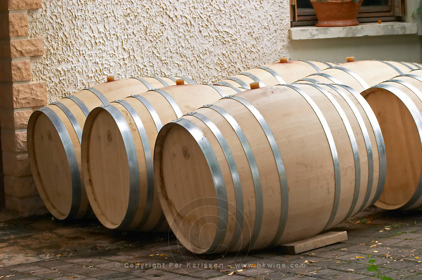 Oak barrel aging and fermentation cellar. Domaine Tracot Dubost, Beaujolais, France