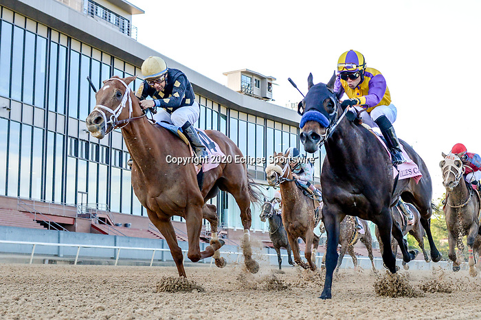 April 18, 2020:  Ce Ce (1) with jockey Victor Espinoza aboard during the Apple Blossom Handicap at Oaklawn Racing Casino Resort in Hot Springs, Arkansas on April 18, 2020. Ted McClenning/Eclipse Sportswire/CSM