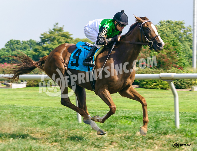 Talaria winning at Delaware Park on 9/8/16