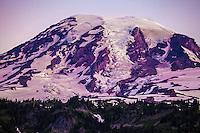 Mt. Rainier in Focus