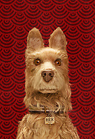 Isle of Dogs (2018) <br /> Promotional art (voice of Edward Norton as &quot;Rex&quot;)<br /> *Filmstill - Editorial Use Only*<br /> CAP/MFS<br /> Image supplied by Capital Pictures