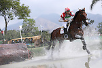 Yoshiaki Oiwa (JPN), <br /> AUGUST 8, 2016 - Equestrian : <br /> Eventing Individual Dressage <br /> at Olympic Equestrian Centre <br /> during the Rio 2016 Olympic Games in Rio de Janeiro, Brazil. <br /> (Photo by Yusuke Nakanishi/AFLO SPORT)