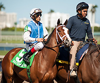 HALLANDALE BEACH, FL - March 3: Amertume, #5, parades onto the track with John Velazquez up for trainer Todd Pletcher for the Grade III Herecomesthebride Stakes at Gulfstream on March 3, 2018 in Hallandale Beach, FL. (Photo by Carson Dennis/Eclipse Sportswire/Getty Images.)