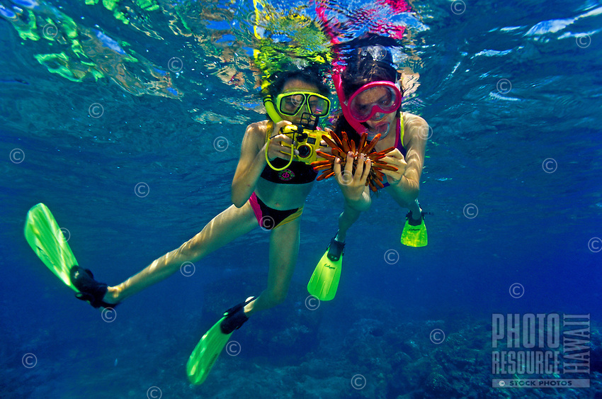 Two girls snorkeling at Hanauma Bay examine pencil slate sea urchin