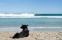 Empty wave at the beachies in Kalbarri, Western Australia.