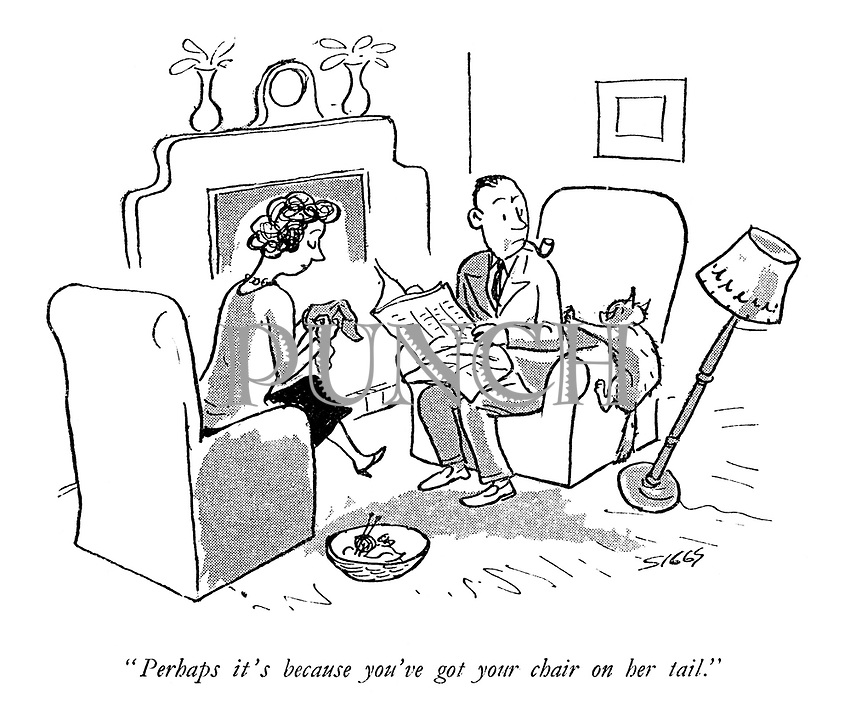 """""""Perhaps it's because you've got your chair on her tail."""""""