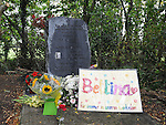 The memorial for Bettina Poeschel at Donore. Photo: Colin Bell/pressphotos.ie
