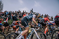 The Peloton at the top of the Muur,  16th Ronde Van Vlaanderen<br /> <br /> Elite Womans Race (1.WWT)<br /> <br /> One day race from Oudenaarde to Oudenaarde<br /> ©Jojo Harper for Kramon