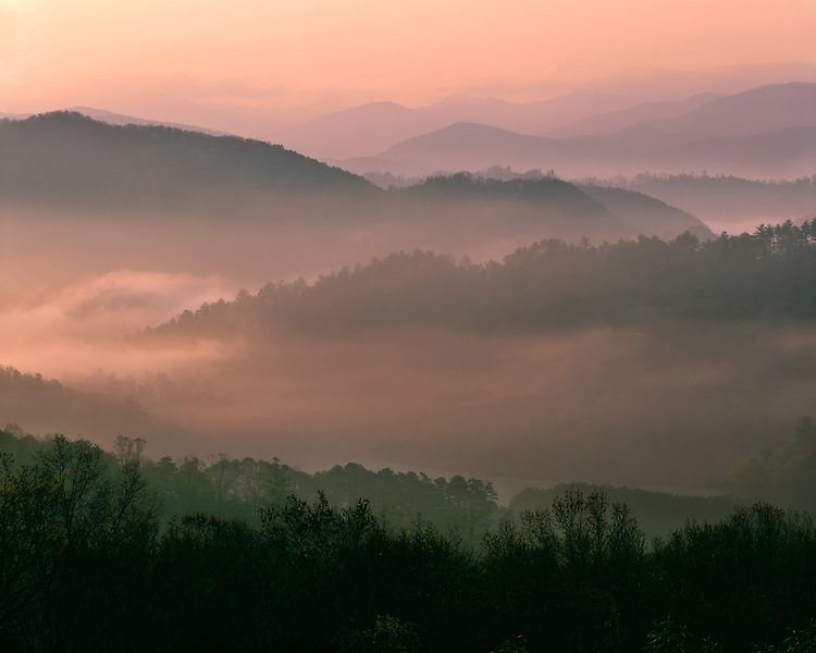Foggy sunrise light on layered mountains viewed from the Foothills Parkway; Great Smoky Mountains National Park, TN