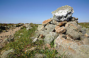 Appalachian Trail (Crawford Path) near Mount Franklin n the White Mountains, New Hampshire during the summer months