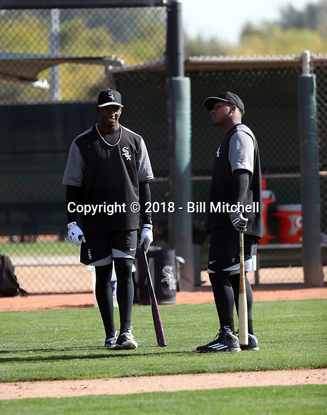 Luis Robert (left) and Yeyson Yrizarri (right) of the Chicago White Sox participates in a pre-season hitting camp at the White Sox training facility at Camelback Ranch on January 16, 2018 in Glendale, Arizona (Bill Mitchell)