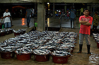 Are we over fishing our oceans? World food supply and our environment. Fishmarket Navotas Manila, Philippines