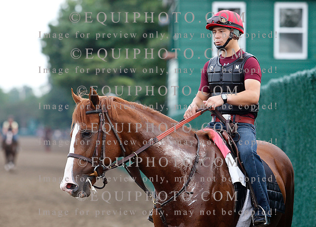 Preakness Stakes Champion Shackleford gets a feel for the track at Monmouth Park with regular exercise rider Faustino Aguilar in the saddle on Thursday morning July 28, 2011.  Shackleford will be the likely morning line favorite for Sunday's (7/31) $1,000,000 Resorts Haskell Invitational at Monmouth Park in Oceanport, New Jersey.  Photo By Bill Denver/EQUI-PHOTO.