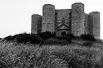 Castel del Monte (Andria)