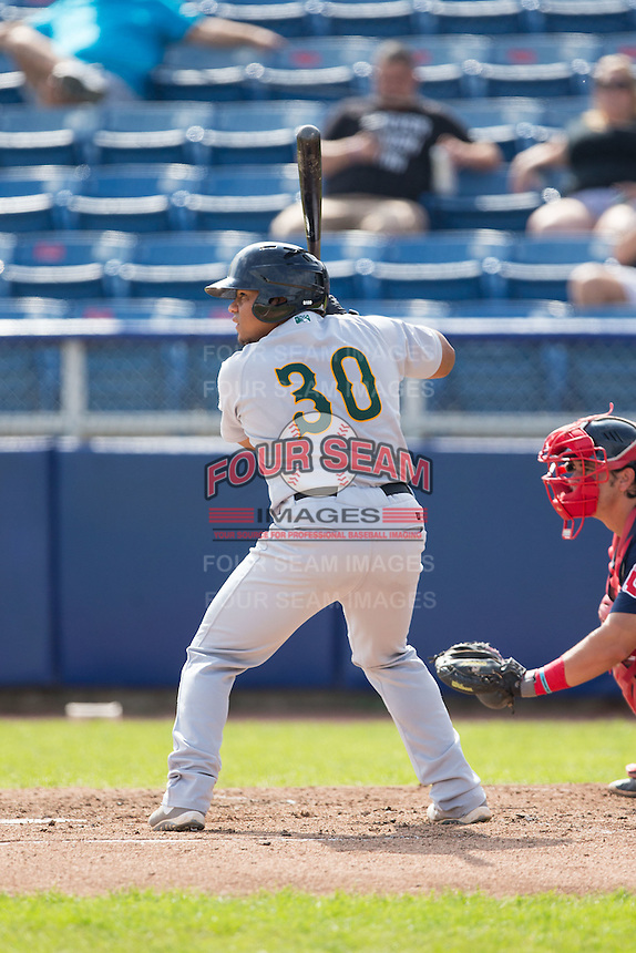 Sicnarf Loopstok (30) of the Lynchburg Hillcats at bat against the Salem Red Sox at LewisGale Field at Salem Memorial Baseball Stadium on August 7, 2016 in Salem, Virginia.  The Red Sox defeated the Hillcats 11-2.  (Brian Westerholt/Four Seam Images)