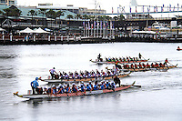 Dragon Boat Races, Sydney 23.02.13