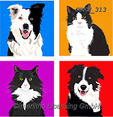 Kate, CUTE ANIMALS, LUSTIGE TIERE, ANIMALITOS DIVERTIDOS, paintings+++++Graphic cats and dogs 1,GBKM313,#ac#, EVERYDAY ,cat,cats ,dogs,dog ,puzzle,puzzles