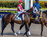 HALLANDALE BEACH, FL - December 30: #3 Run Time wins the $100,000 H. Allen Jerkens Stakes for trainer Michael J. Maker with jockey Tyler Gaffalione on board on December  30, 2017 at Gulfstream Park, Hallandale Beach, FL (Photo by Bob Aaron/Eclipse Sportswire/Getty  Images)