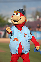 Inland Empire 66ers mascot Bernie during a game against the Lake Elsinore Storm at San Manuel Stadium on April 29, 2017 in San Bernardino, California. Inland Empire defeated Lake Elsinore, 3-1. (Larry Goren/Four Seam Images)