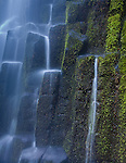 Mosses and falling water play on the basalt columns of Proxy Falls, Oregon.