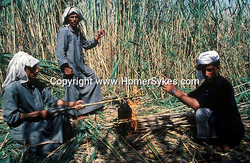 Marsh Arabs. Southern Iraq. Circa 1985. Marsh Arab men cutting reads making tea. Haur al Mamar or Haur al-Hamar marsh collectively known now as Hammar marshes Irag 1984