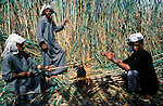 Marsh Arabs. Southern Iraq. Circa 1985. Marsh Arab men cutting reads making tea. Haur al Mamar or Haur al-Hamar marsh collectively known now as Hammar marshes Irag 1984