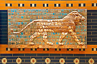Lion relief on glazed bricks from the Ishtar Gate, Babylon, Iraq constructed in about 575 BC by order of King Nebuchadnezzar II on the north side of the city. Dedicated to the Babylonian goddess Ishtar, the monumental gate joined the inner & outer walls of Babylon it was one of the Seven Wonders of the ancient world. Istanbul Archaeological Museum.