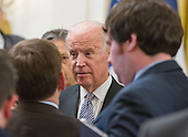United States Vice President Joe Biden speaks to reporters following President Barack Obama and President Francois Hollande of France conducting a joint press conference in the East Room of the White House in Washington, DC on Tuesday, November 24, 2015. The leaders agreed on the need to contain ISIL.<br /> Credit: Ron Sachs / CNP