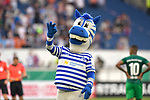 11.08.2019 , Schauinsland-Reisen Arena, Duisburg, DFB Pokal<br /> <br /> DFB REGULATIONS PROHIBIT ANY USE OF PHOTOGRAPHS AS IMAGE SEQUENCES AND/OR QUASI-VIDEO.<br /> <br /> im Bild / picture shows Duisburger Zebra-Makottchen Ennatz .<br /> <br /> <br /> Foto © nordphoto / Freund