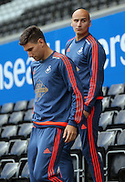 (L-R) Federico Fernandez and Jonjo Shelvey of Swansea walk down the stand prior to the Barclays Premier League match between Swansea City and Arsenal at the Liberty Stadium, Swansea on October 31st 2015