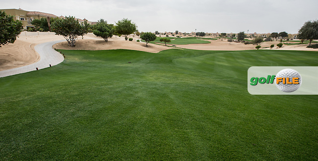8th fairway at The Els Club , Dubai, United Arab Emirates.  28/01/2016. Picture: Golffile | David Lloyd<br /> <br /> All photos usage must carry mandatory copyright credit (&copy; Golffile | David Lloyd)