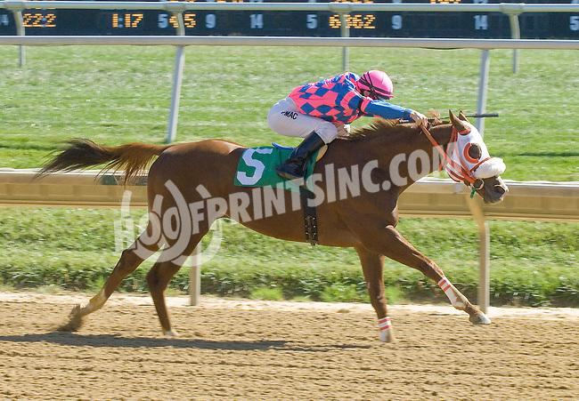 Cabret Cowboy winning at Delaware Park on 10/13/12